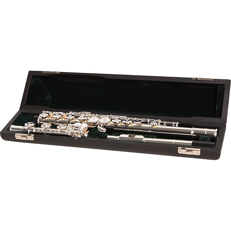 Pearl Flutes 525 Series Intermediate Flute Model 525RB1RB - B Foot, Inline G