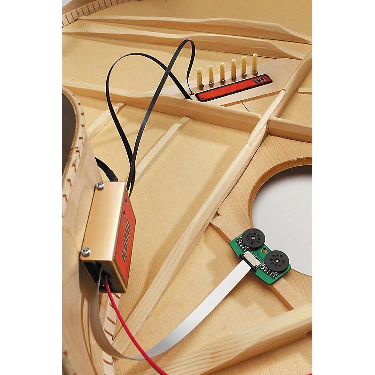 B-BandA2.2 XOM Acoustic Guitar PreampNarrow
