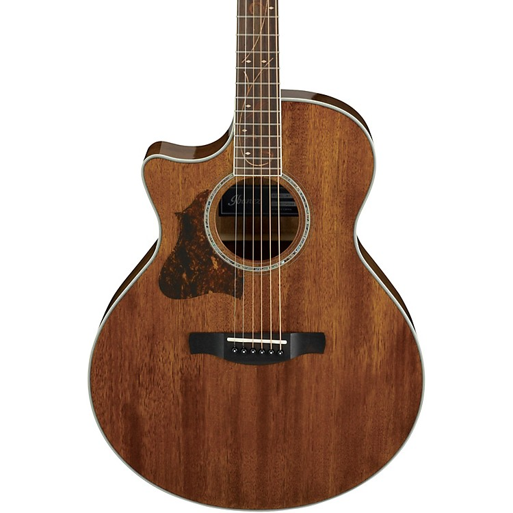 IbanezAE245L Left-Handed Acoustic-Electric GuitarGloss Natural