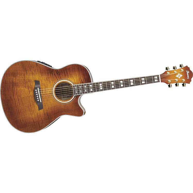 IbanezAEF30E Acoustic-Electric Guitar