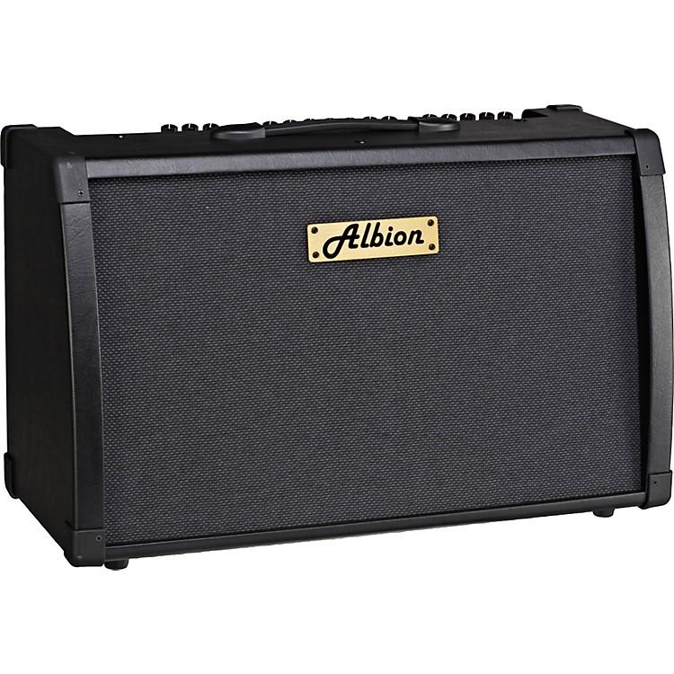 Albion AmplificationAG Series AG80DFX 80W Guitar Combo AmpBlack888365132648