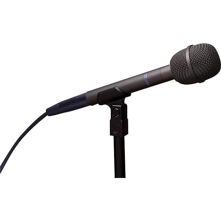 Audio-TechnicaAT8031 Handheld Cardioid Condenser Microphone