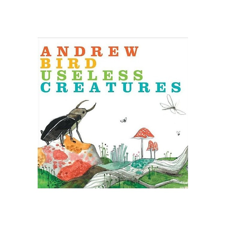 Alliance Andrew Bird - Useless