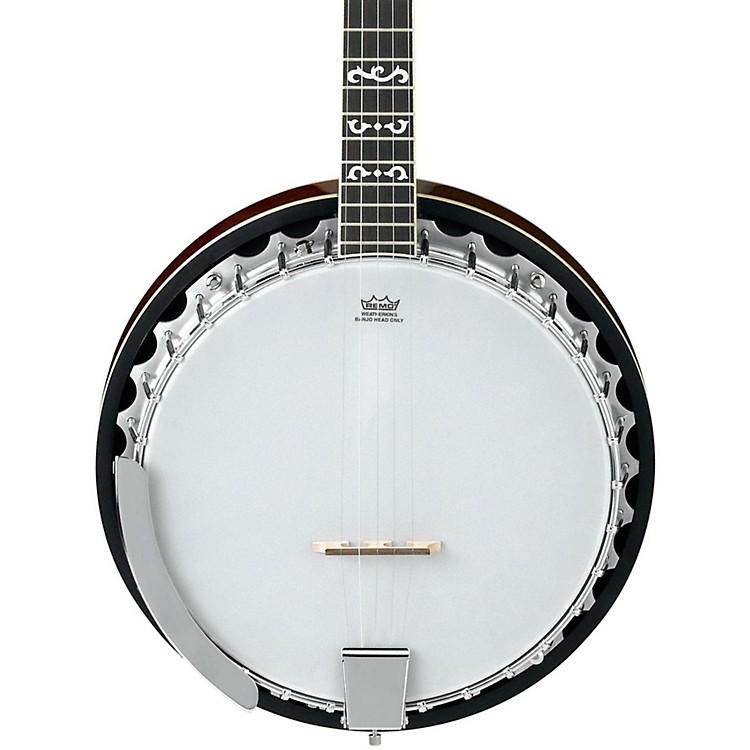 IbanezB100 5-String Banjo