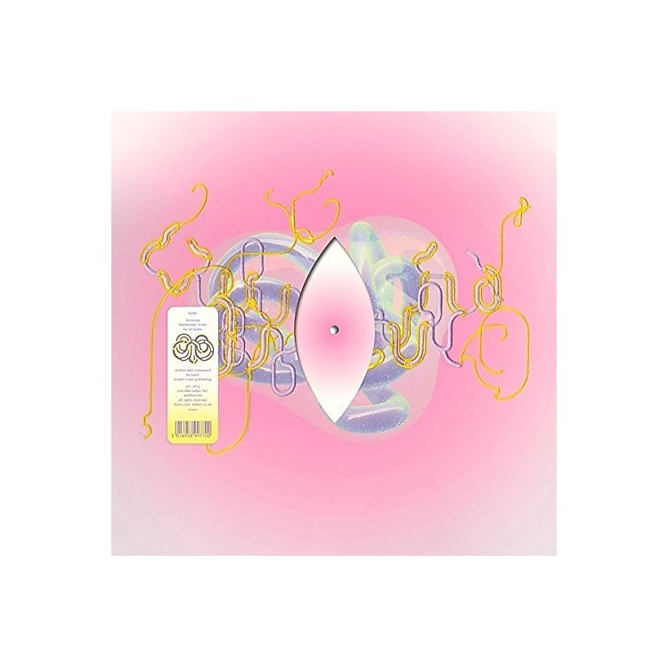 AllianceBjork - Lionsong (Kareokieijd Remix By Mica Levi)