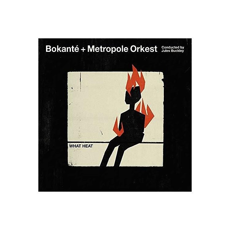 AllianceBokante - What Heat