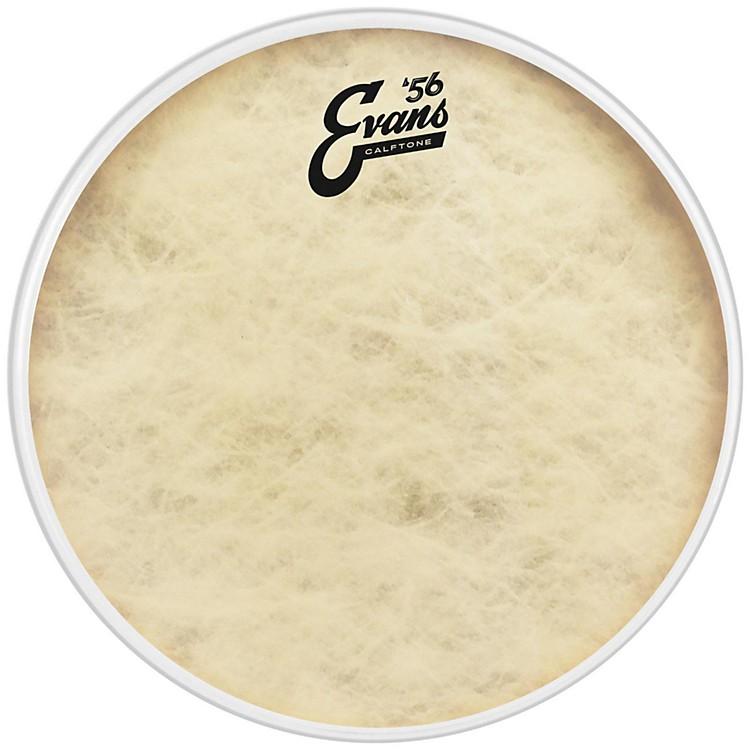 EvansCalftone Drum Head12 in.
