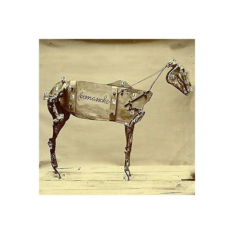 AllianceChadwick Stokes - Horse Comanche