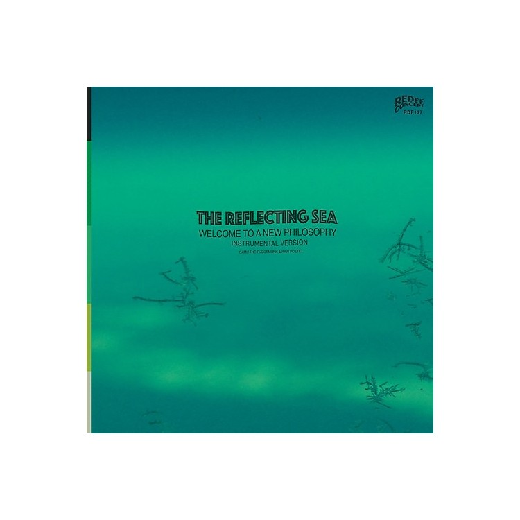 AllianceDamu the Fudgemunk & Raw Poetic - Instrumentals From The Reflecting Sea