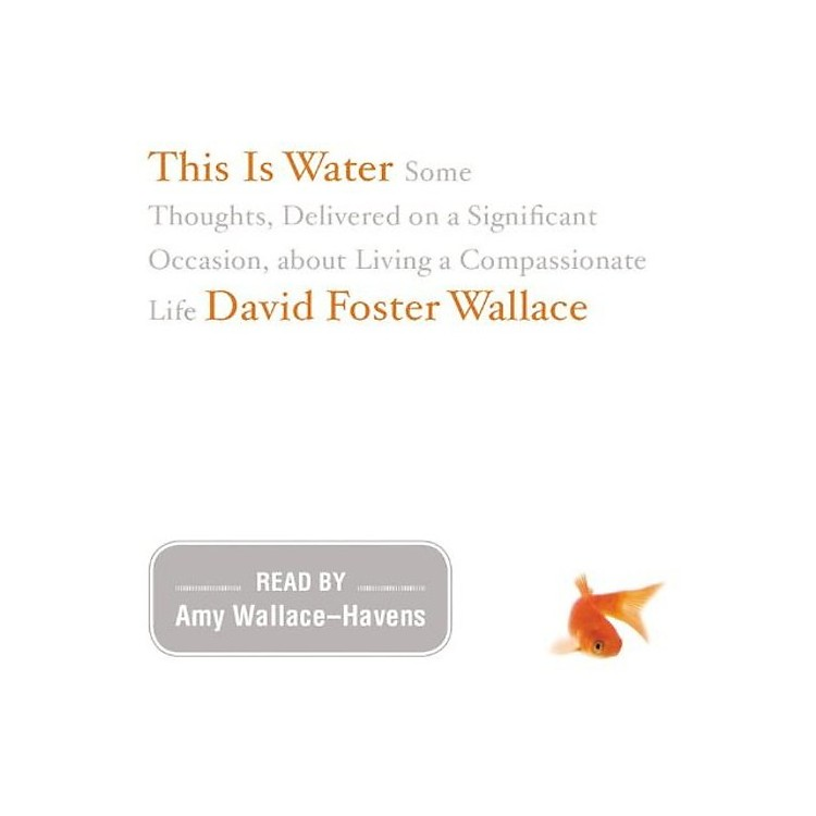 AllianceDavid Foster Wallace - This Is Water: The Original Recording
