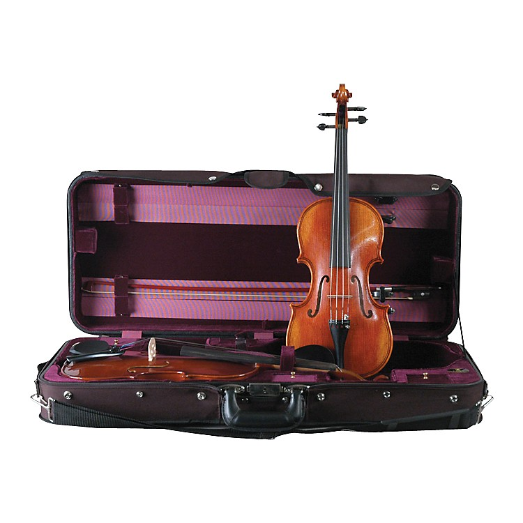 Bellafina Double Violin Case