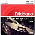 D'Addario EJ63 Nickel Tenor Banjo Strings (9-30)