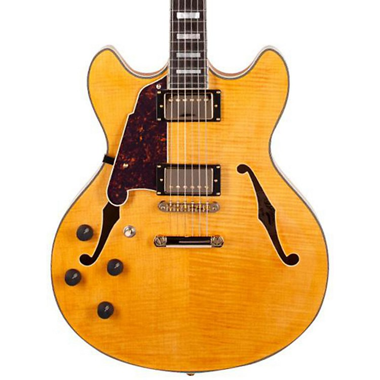 D'AngelicoExcel Series DC Left-Handed Semi-Hollowbody Electric Guitar with Stopbar Tailpiece