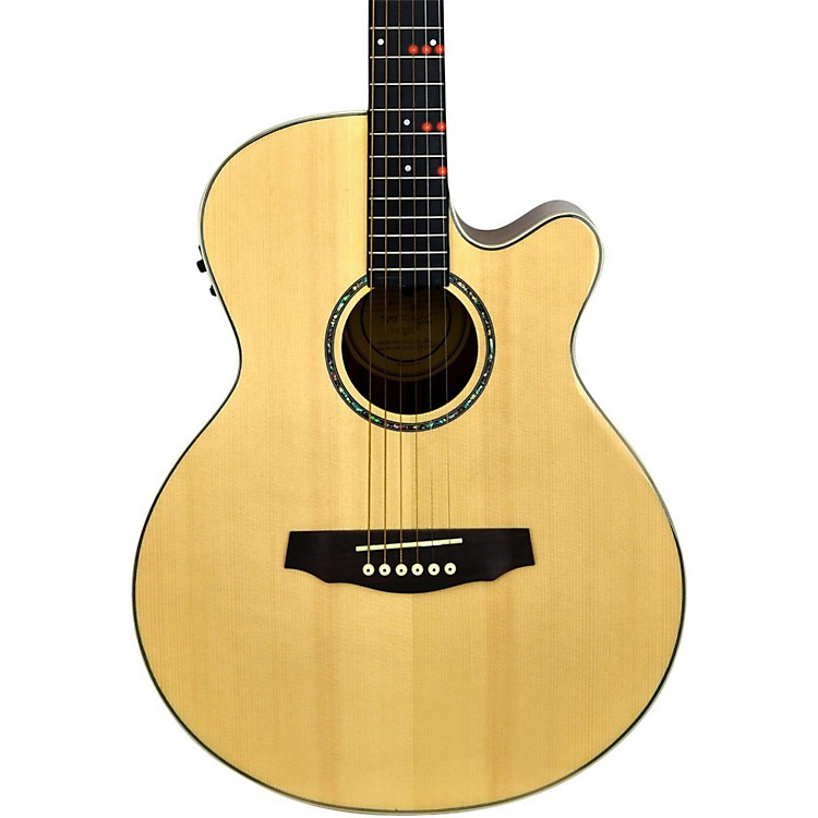 FretlightFG-529 Pro Acoustic-Electric Guitar with Built-In Lighted Learning SystemNatural