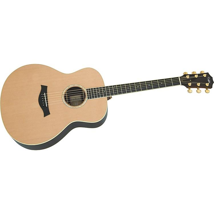 TaylorGS Series Rosewood/Cedar Top Acoustic Guitar (2010 Model)