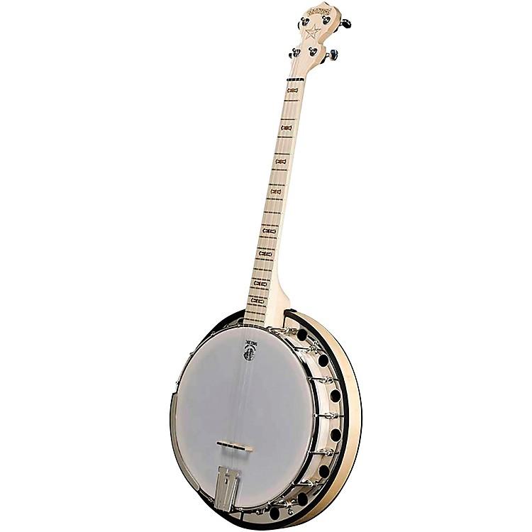 DeeringGoodtime 2 19-Fret Tenor Banjo