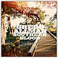 Gregg Allman - Southern Blood Limited Edition Vinyl LP