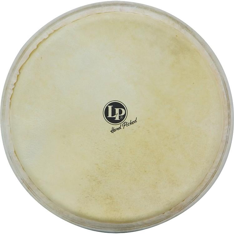 LPLP961 Djembe Head for LP72012.5 in.