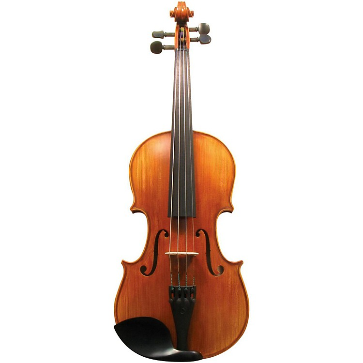 Maple Leaf Strings MLS 130 Apprentice Collection Violin Outfit 4/4 Size