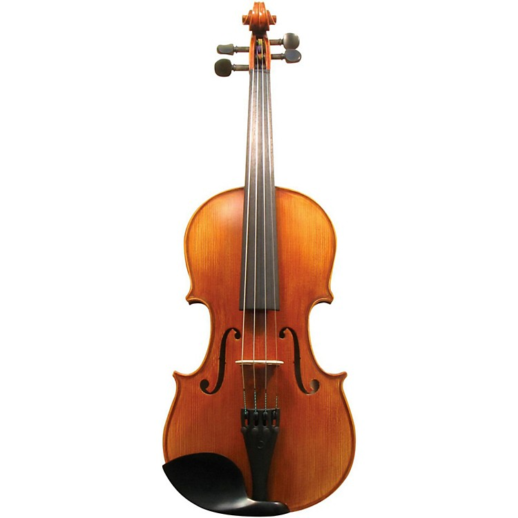 Maple Leaf Strings MLS 140 Apprentice Collection Viola Outfit 16.5 in.