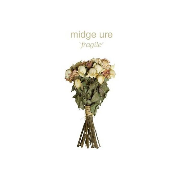 AllianceMidge Ure - Fragile