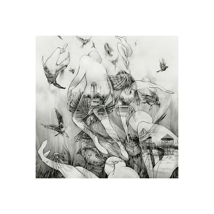 AllianceMono - Last Dawn