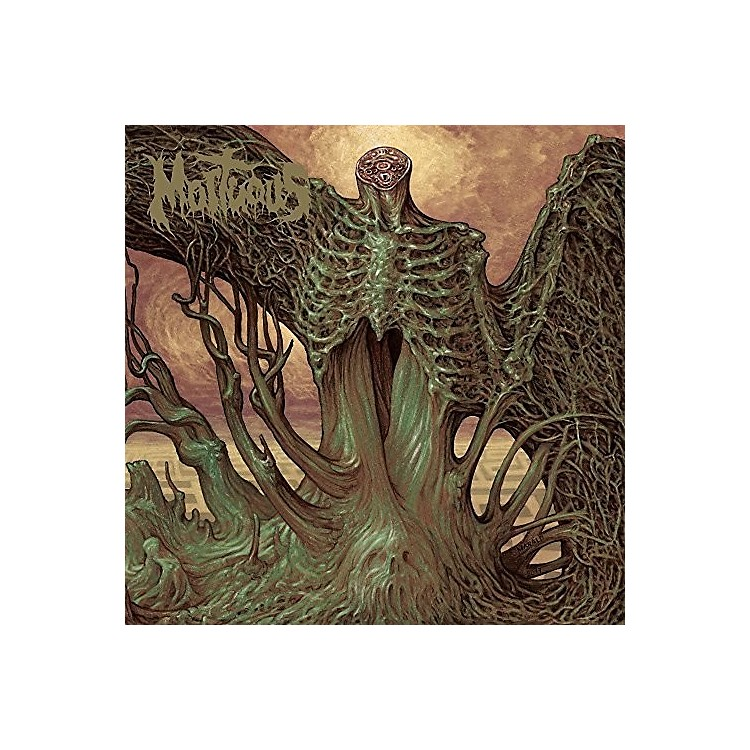 AllianceMortuous - Through Wilderness