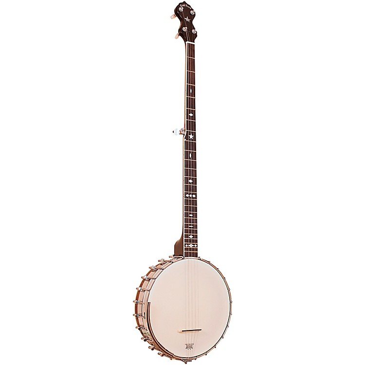 Gold ToneOT-800LN Old Time Long Neck Banjo with CaseVintage Brown