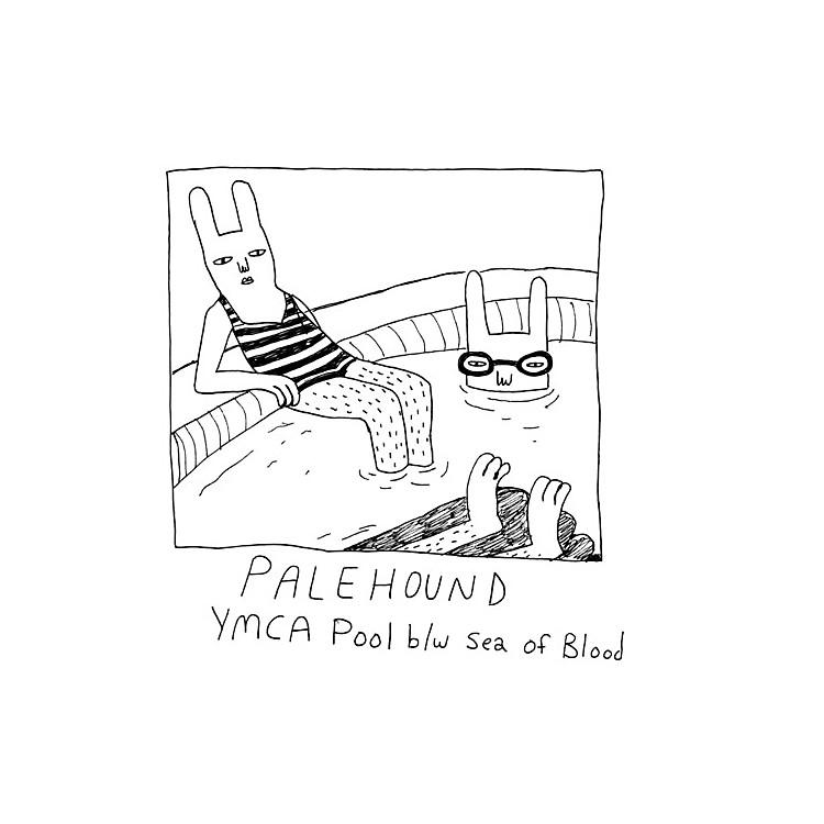 AlliancePalehound - Ymca Pool
