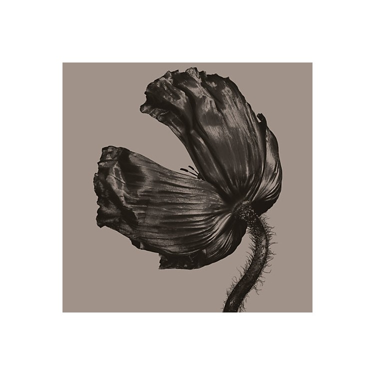 AlliancePet Shop Boys - Release (2017 Remastered Version)
