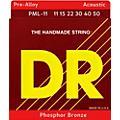 DR StringsPre-Alloy Phosphor Bronze Acoustic Guitar Strings Medium Lite thumbnail