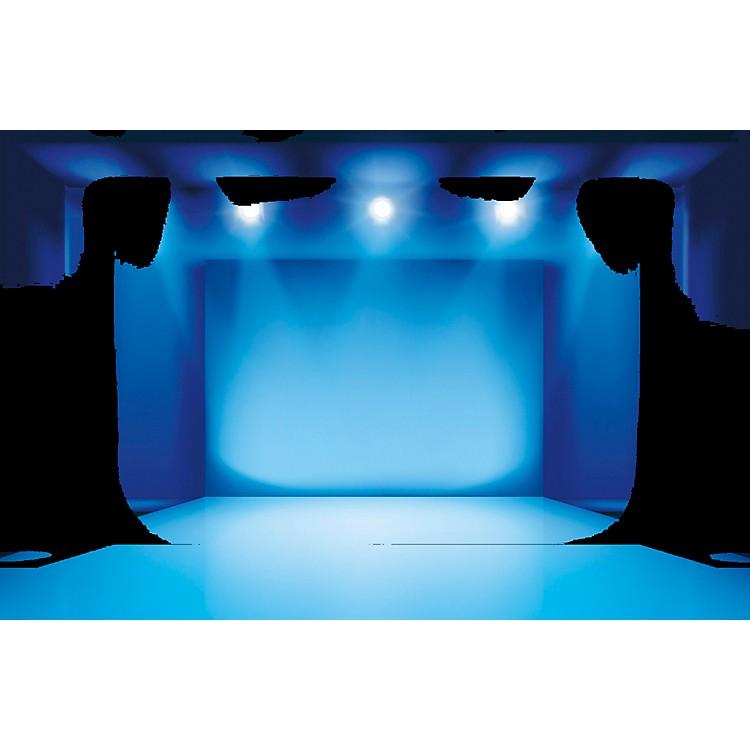 Black LabelPro RaysGF 5 gal. Professional Light Density, Camera-Friendly, Glycerin-Free Fog Fluid