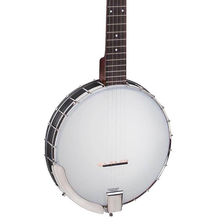 RoverRB-20 5-String Old-Time Banjo