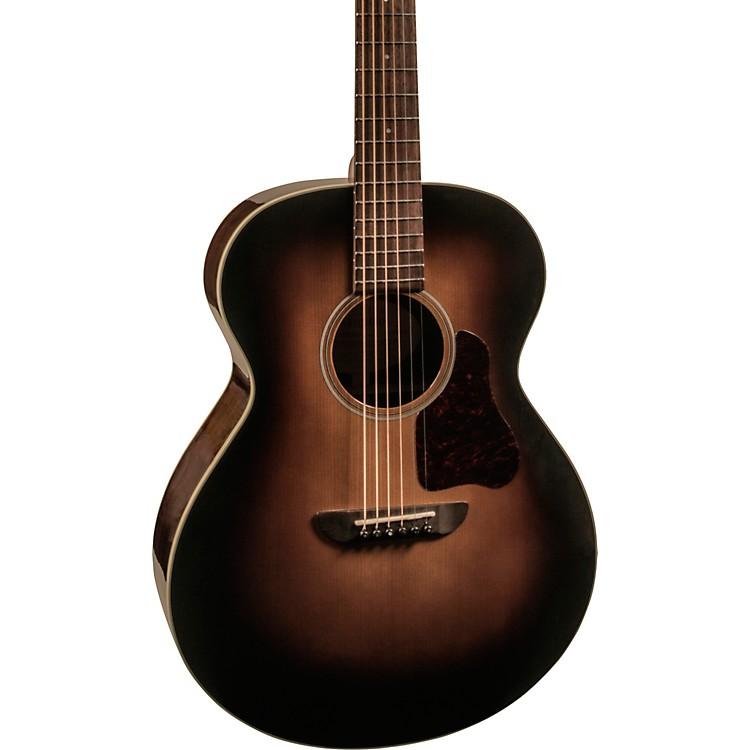 WashburnRSG100SWEVSK-D Solo DeLuxe Auditorium Acoustic Guitar
