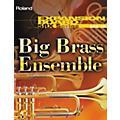 RolandSRX-10 Big Brass Ensemble Expansion Board thumbnail