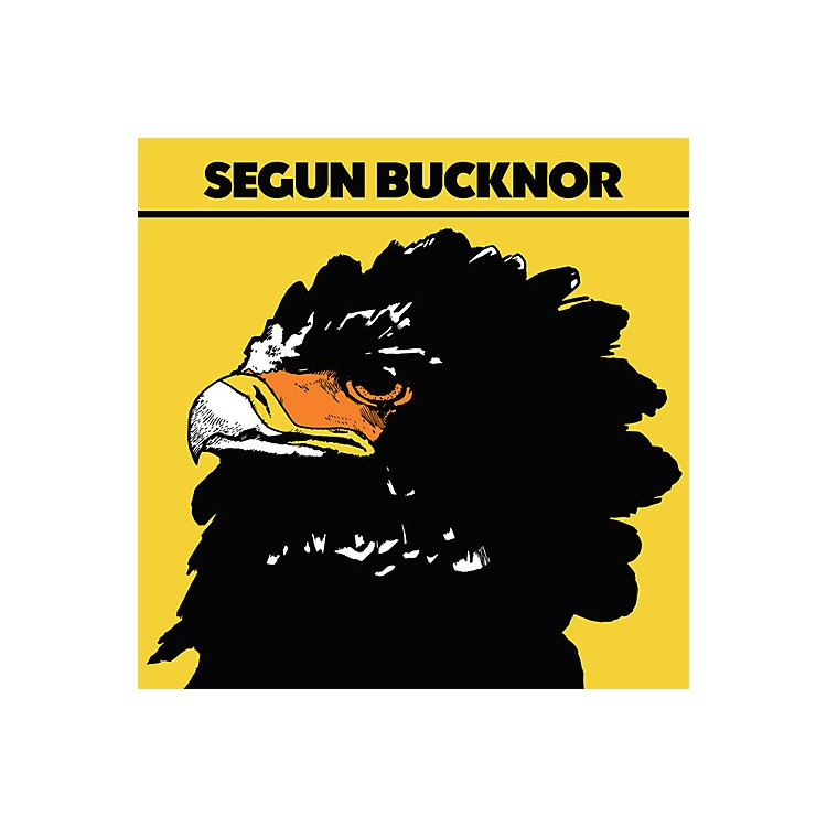 Alliance Segun Bucknor - Segun Bucknor