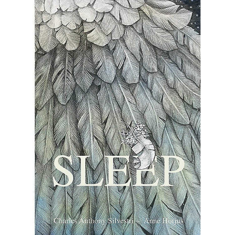 Acroterion BooksSleep Book Series Hardcover Written by Charles Anthony Silvestri