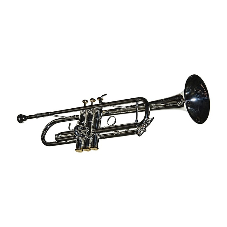 RS Berkeley TP608 Artist Series Bb Trumpet