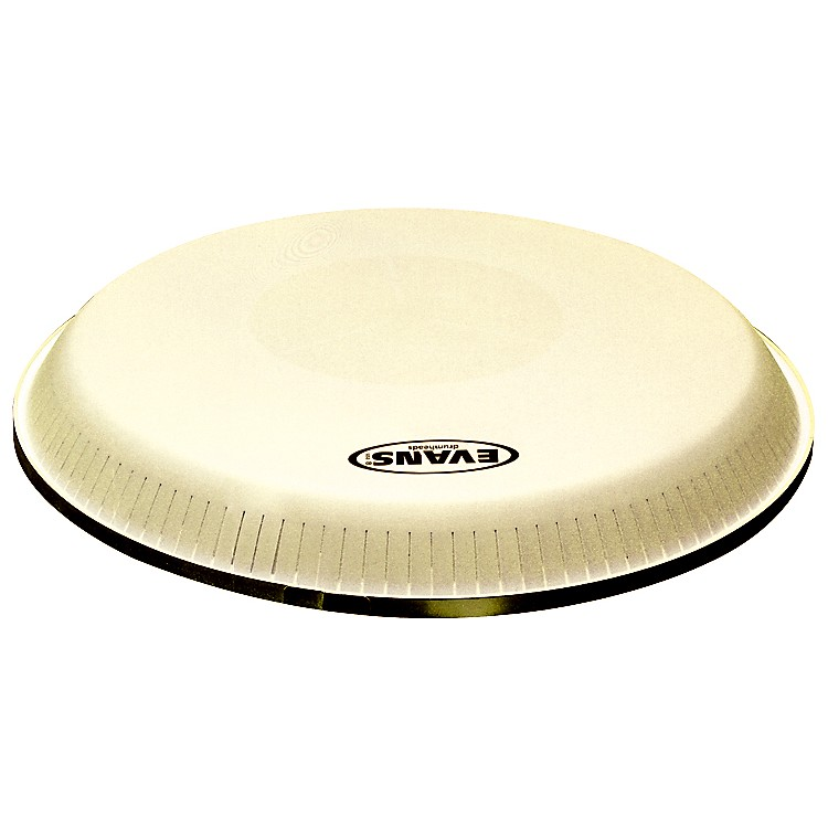 EvansToca and LP Standard Replacement Conga Head11.75 in.