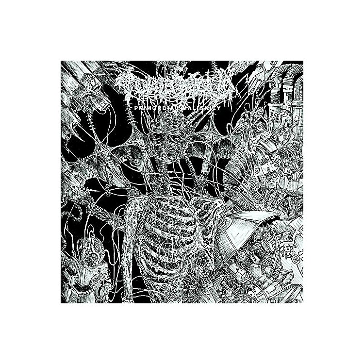 Alliance Tomb Mold - Primordial Malignity