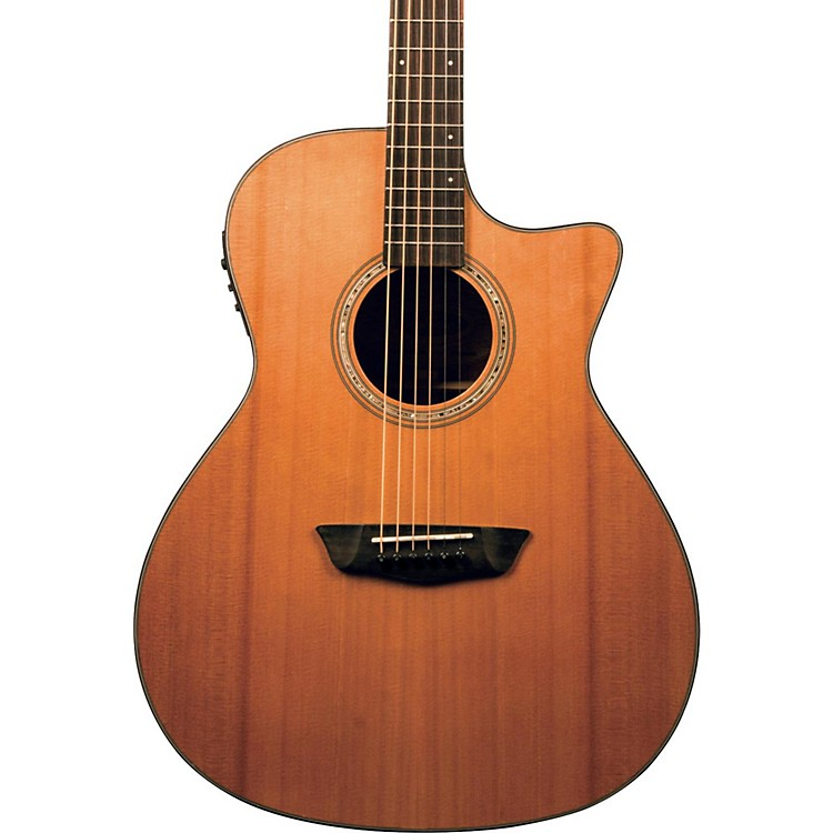 WashburnWoodline Series WLG110SWCEK Grand Auditorium Acoustic-Electric GuitarNatural